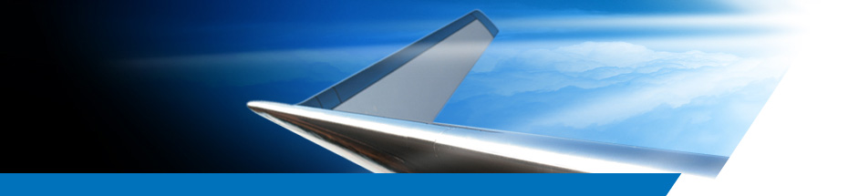 Blended Winglets Upgrade